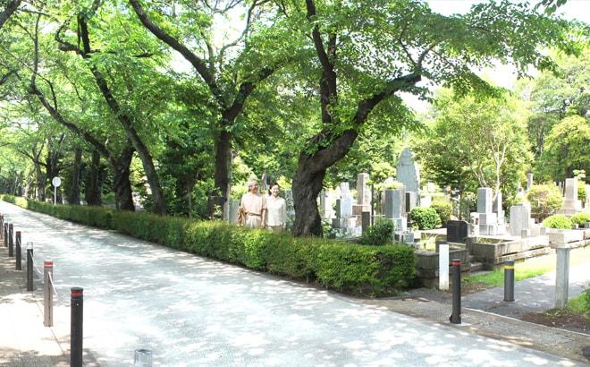 都立青山霊園