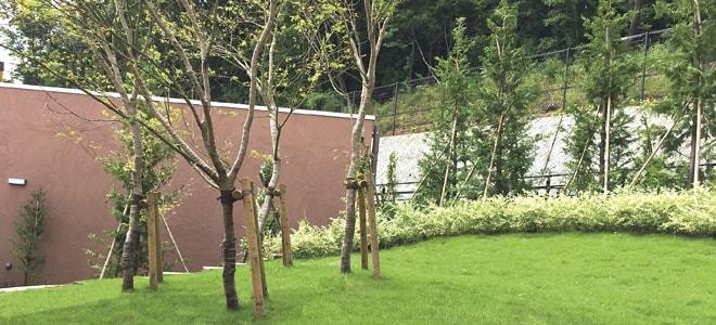 公営 稲城・府中メモリアルパーク 樹木式墓地