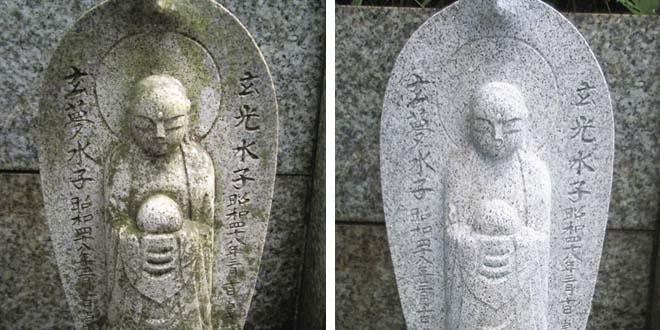墓石の汚れの原因/苔・カビ